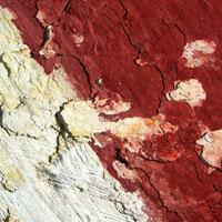 http://thepharmashopist.blogspot.com/2009/06/crush-wall.html