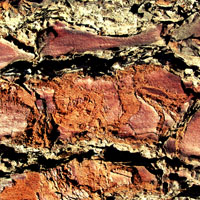 Texture Thursday: Mixed Surfaces