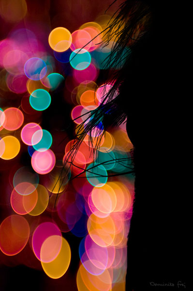 bokeh15 Inspirational Examples of the Bokeh Effect