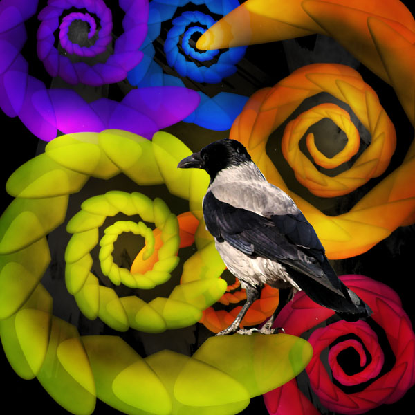 birdactions15 Create a Psychedelic Alternate Reality Using Photoshop Actions
