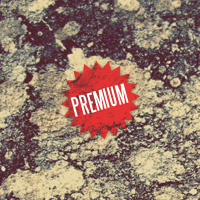 Premium Texture Set: Tint