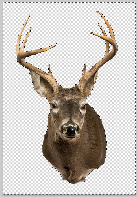 Reindeer Antlers Transparent Background Images & Pictures - Becuo