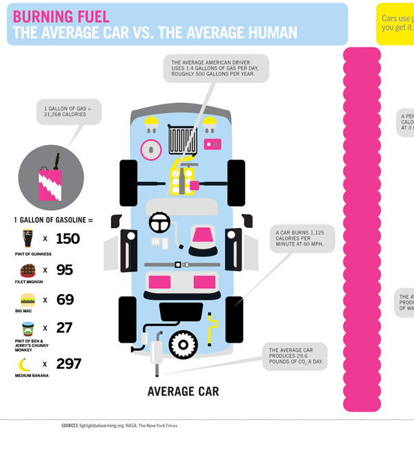 30 Really Informative and Beautiful Infographics | PSDFan