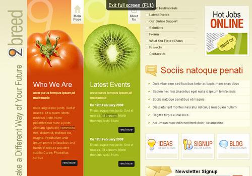 freetemplates30 34 Free & Beautiful xHTML/CSS Templates
