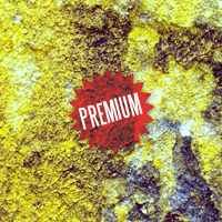 Premium Texture Set: Yellow