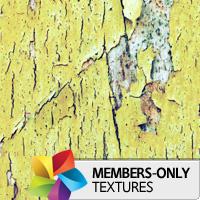 Premium Texture Set: Blank