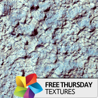 Texture Thursday: Pointhall