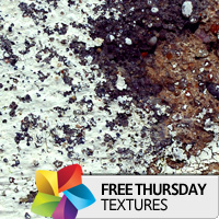 Texture Thursday: Sprung