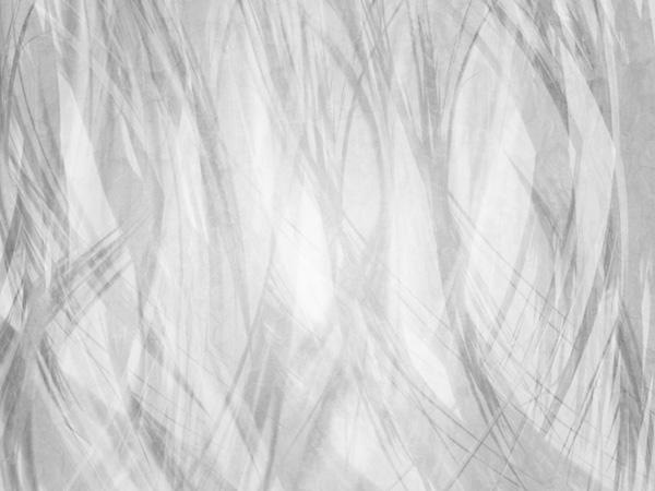 Branchtype4 Tutorial Efeito Em Texto Galhos De Inverno  Photoshop