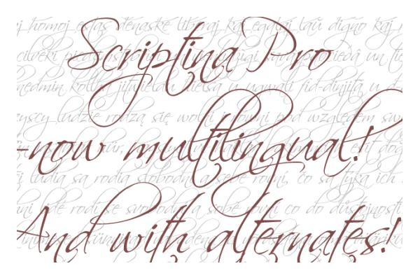 46 Free Premium Elegant Calligraphic Fonts
