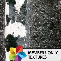 Premium Texture Set: Gapa
