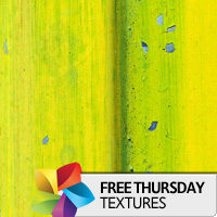 Texture Thursday: Lime