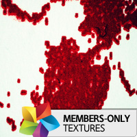 Premium Texture Set: Print Blood