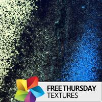 Texture Thursday: Shame