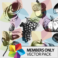 Premium Vector Pack: Autumn Fruit