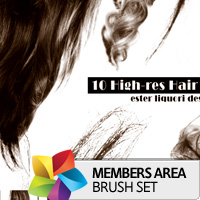 Premium Brush Set: Hair