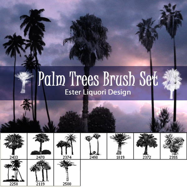 Premium Brush Set Palm Trees Psdfan