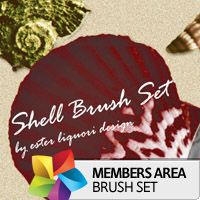 Premium Brush Set: Shells