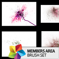 Premium Brush Set: Detailed Watercolor 1