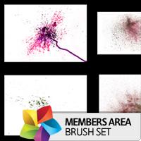 Premium Brush Set: Detailed Watercolor 1