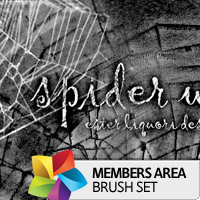 Premium Brush Set: Spider Webs