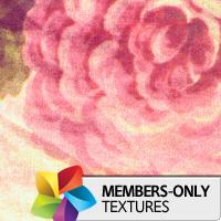 Premium Texture Set: Trends