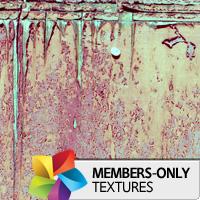 Premium Texture Set: Doors