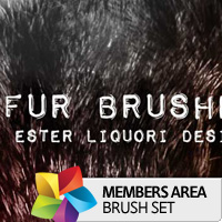 Premium Brush Set: Fur