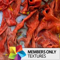 Premium Texture Set: Artist