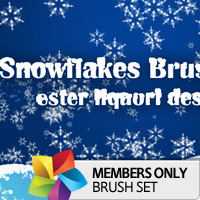 Premium Brush Set: Snowflakes