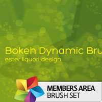 Premium Brush Set: Bokeh