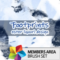 Premium Brush Set: Footprints
