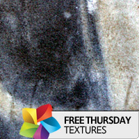 Texture Thursday: Graved
