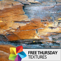 Texture Thursday: Light Wood