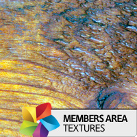 Premium Texture Set: WoNor