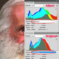 Advanced Tonal Correction Via Subject Specific Histogram Adjustments