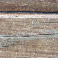 Texture Thursday: Wood