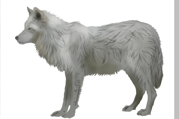 How to Paint Quick Realistic Fur Using Photoshop   PSDFan