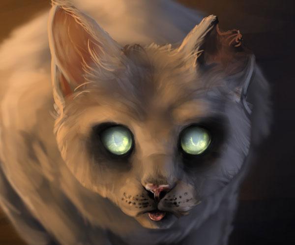 Cat Dog Creepy